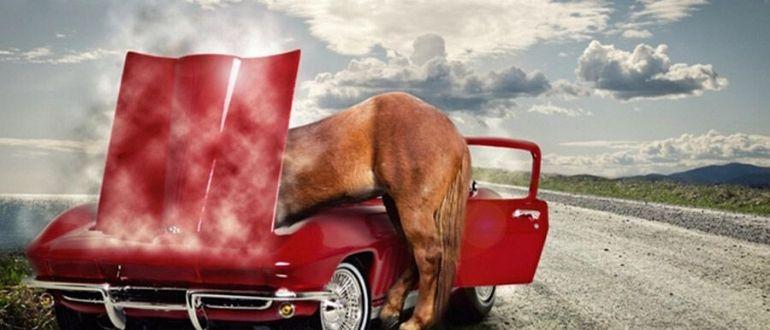 калькулятор перевода лошадиных сил в ватты