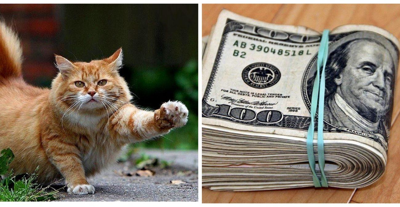 Кот денежный талисман